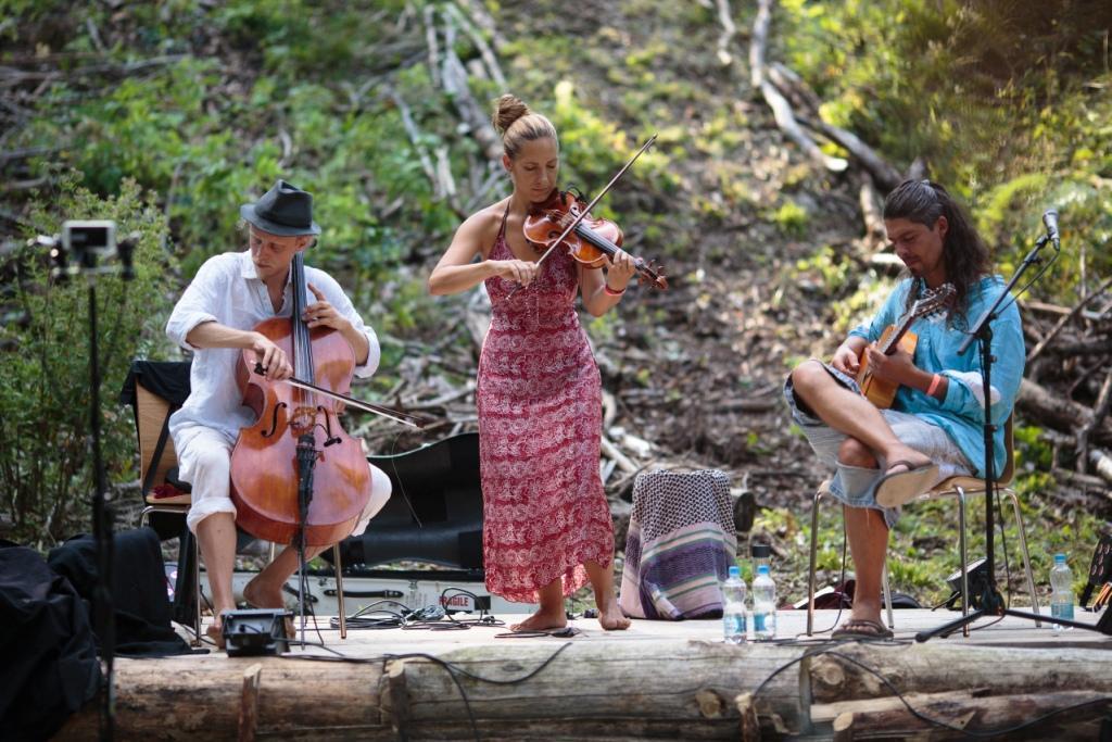 Concert sous les arbres à la Coquille, et visite guidée @ Parking de la source de la Coquille