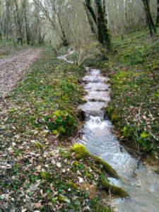 Balade au fil de la Seine entre Oigny et Orret @ RV chemin de l'abbaye d'OIgny